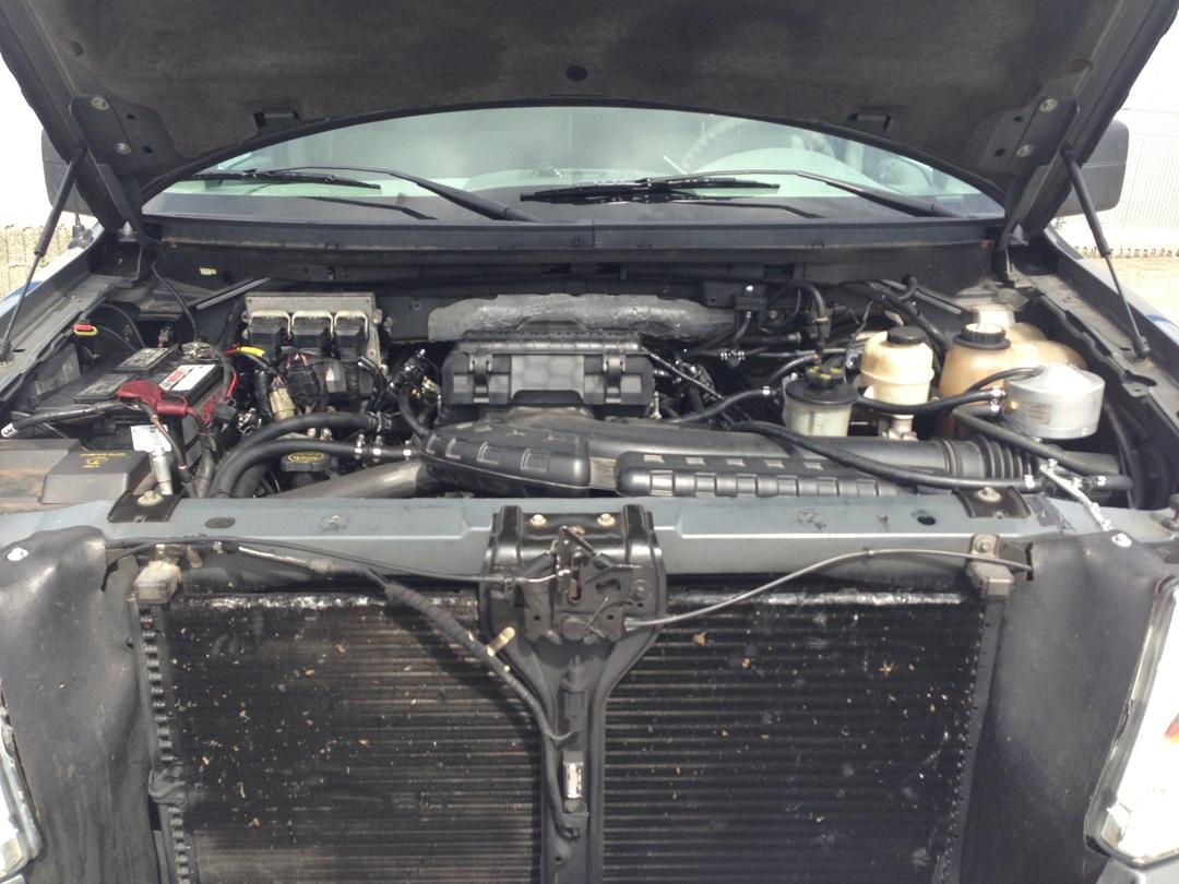 autogas_umruesstung-auf-lpg-ford_f150-59-pickup-motor