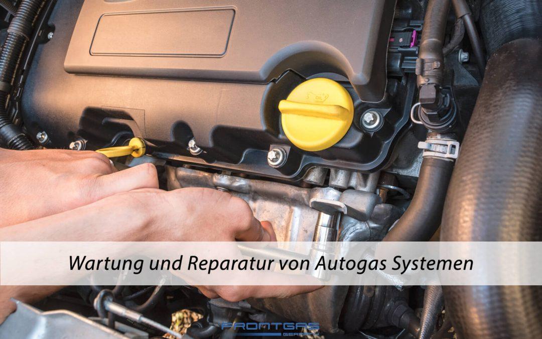 Wartung und Reparatur von Autogassystemen
